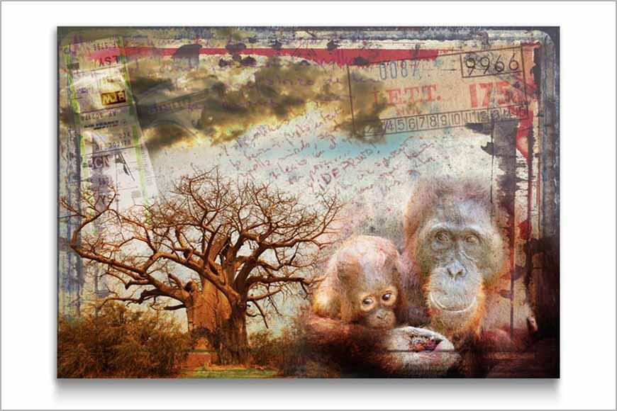 compo collage