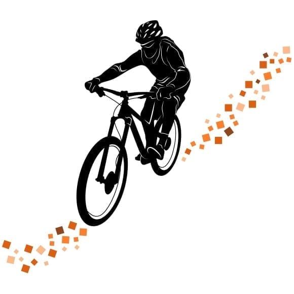 Vinil mountain bike