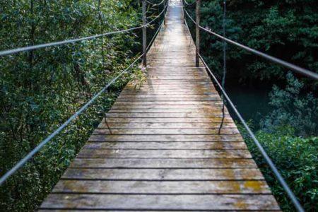 Fotografía de un puente colgante en el bosque. Ideal para decorar cualquier espacio, sobre todo si se requiere profundidad.