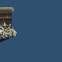 ventana florida