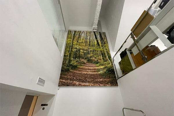Imagen de naturaleza en la pared de una escalera