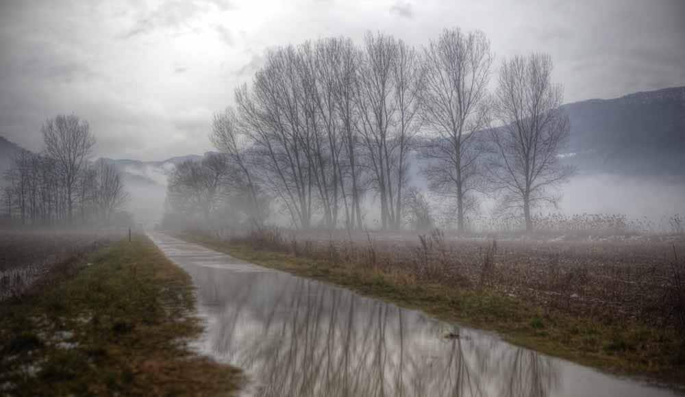 Imagen de naturaleza de aspecto mágico con árboles reflejados en un riachuelo
